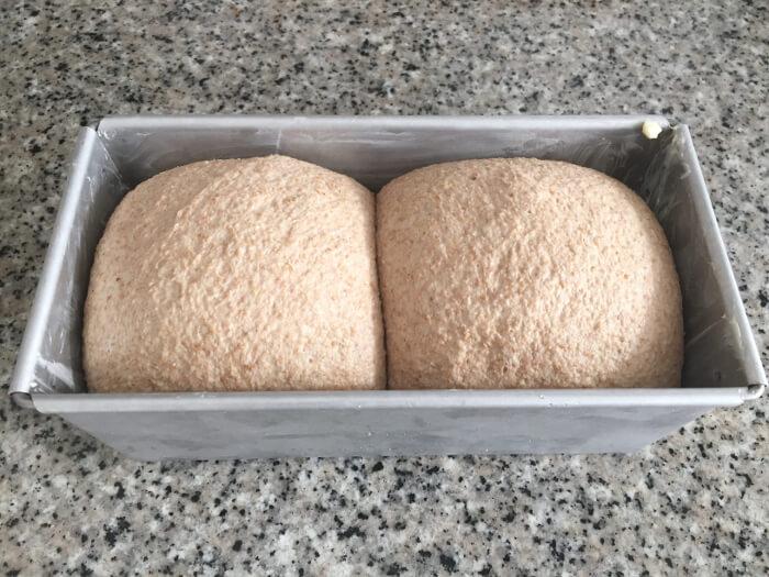 El pan ha subido y casi llega al borde. Está listo para ir al horno.