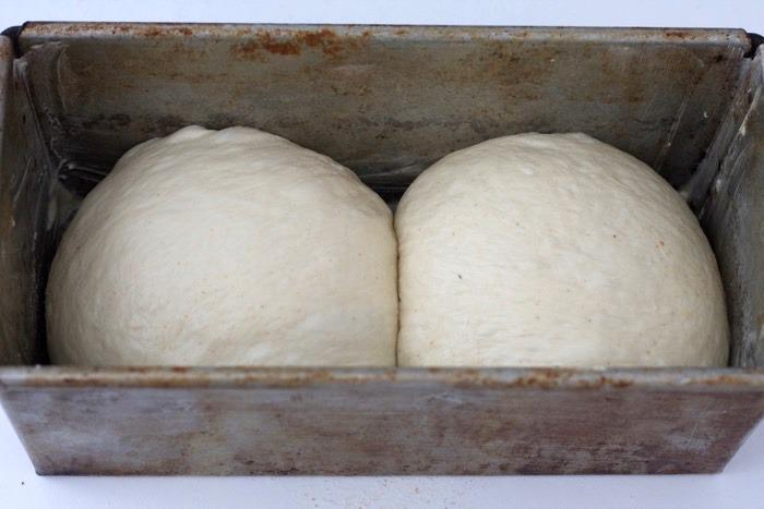 4-pan-de-molde